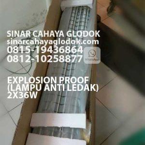 lampu anti ledak explosion proof 2x36 watt