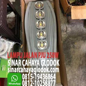 lampu pju led 250w