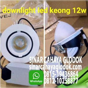 lampu downlight keong led
